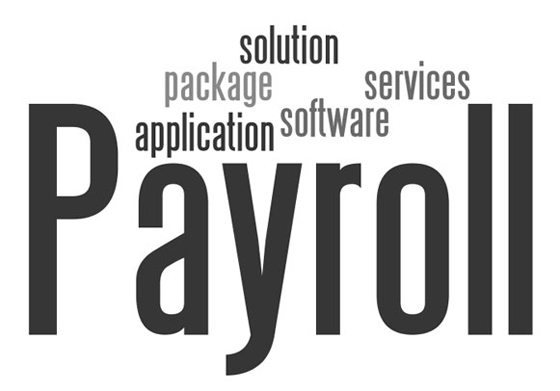 HR & Payroll Management Software|Employee Payroll Management System